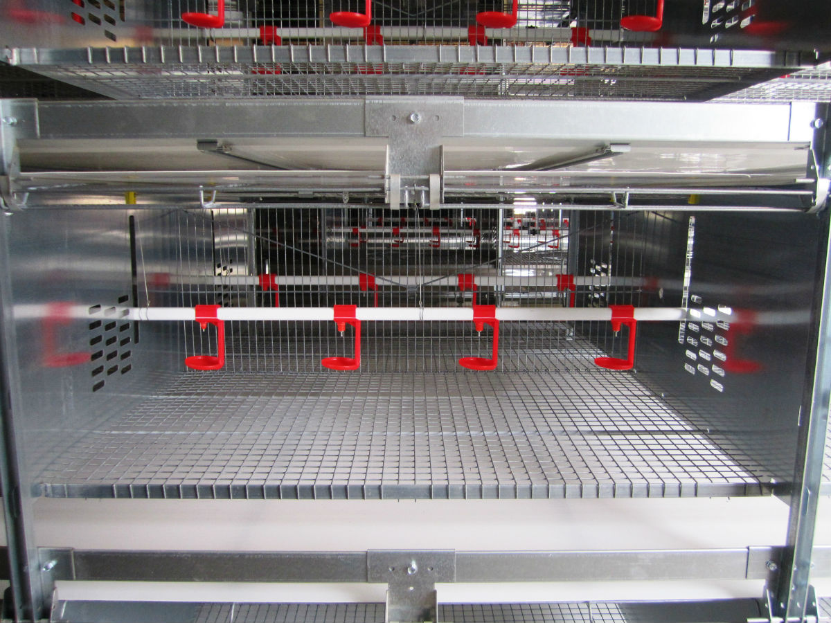 The S1000 rearing system adapts to the needs of D.O.C. and pullets