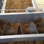 Manure spread evenly on the top tier of the manure drying tunnel